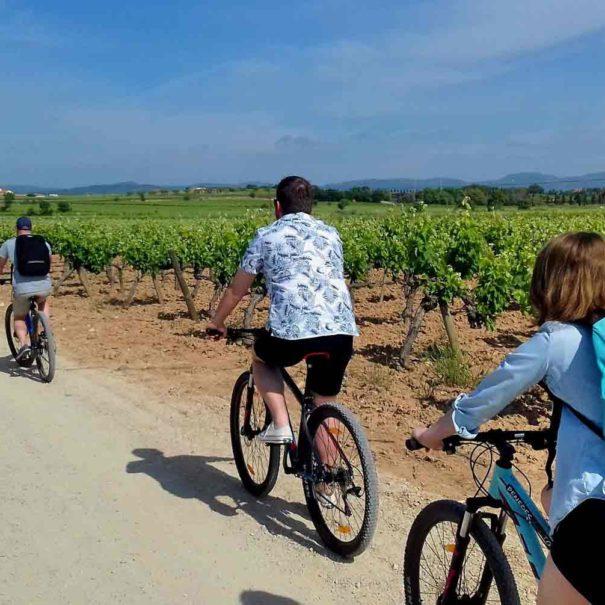 Tour vin Penedès