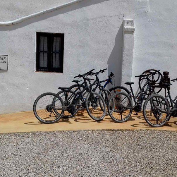 Alquiler bicicleta Penedès