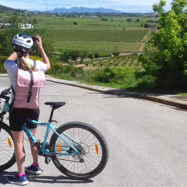 bike wine tour montserrat