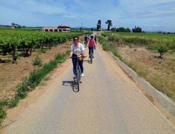 Bike Wine Tour Penedès