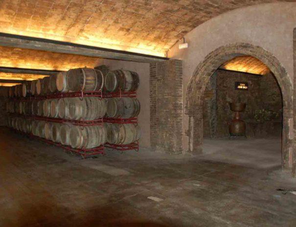 cave-vin-blanc-penedes