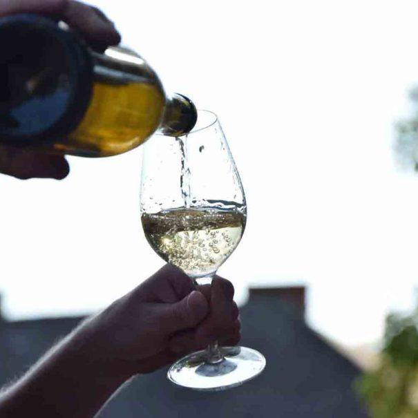 Dégustation de vin dans le Penedès