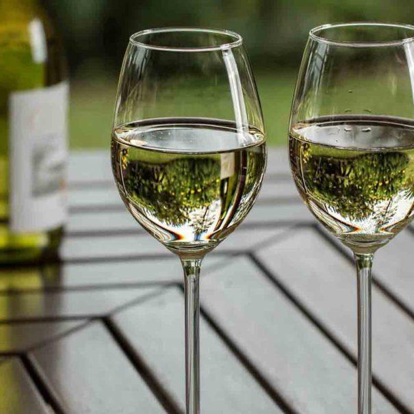 Dégustation vin blanc Penedès