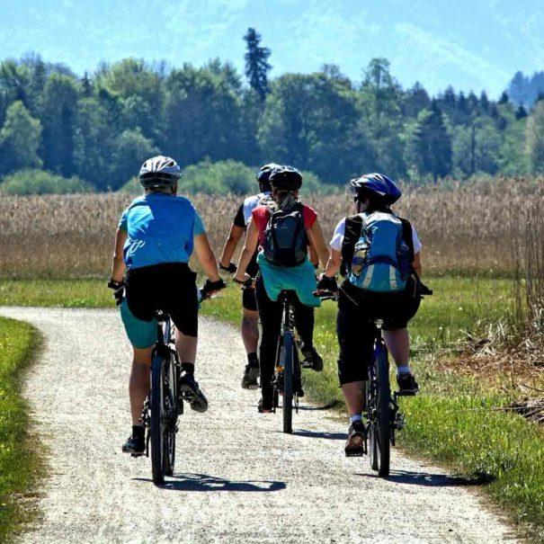 Tour à vélo Penedès
