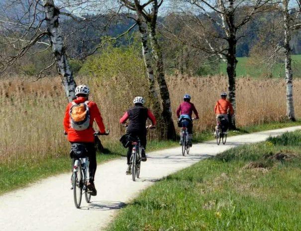 Vélo dans les vignes du Penedès