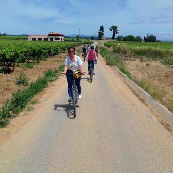 Vino Tour Penedès