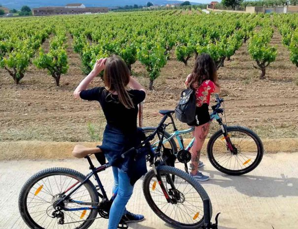Cava Tour Penedès Bike