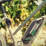 bike wine penedes
