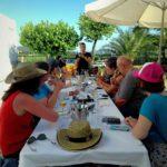 tour domaine vin barcelone