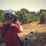 tour vin penedes