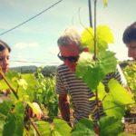 vin cava visite barcelone