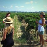 visite vignoble barcelone