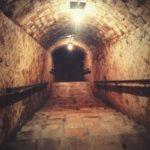 visite cave vin barcelone