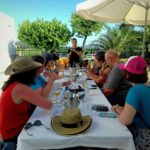 winery tour barcelona