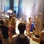 winery visit penedes