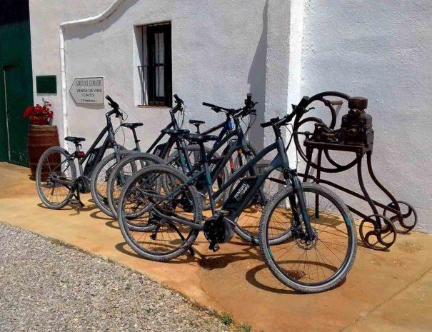 bodega-tour-bicicleta-barcelona