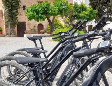 tour bicicleta a bodegas barcelona